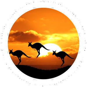 بورسیه دکترا در استرالیا