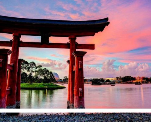 بورسیه دکترا در ژاپن